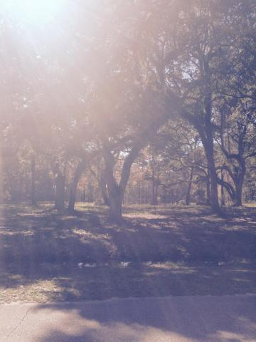 n/a Bay Grove Road, Freeport, FL 32439 (MLS #802538) :: Hammock Bay