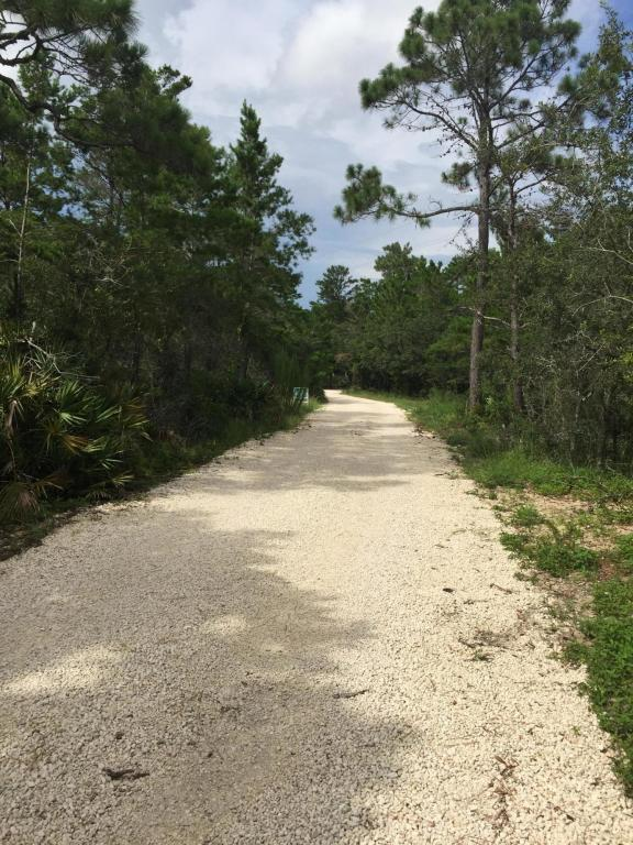 L-3 BLK 4 Tresca Drive, Santa Rosa Beach, FL 32459 (MLS #802705) :: Homes on 30a, LLC