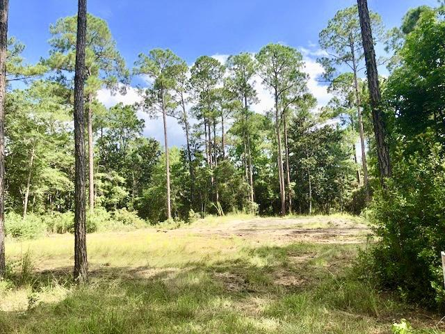 Lot 18 Daisy Drive, Santa Rosa Beach, FL 32459 (MLS #804663) :: Keller Williams Realty Emerald Coast