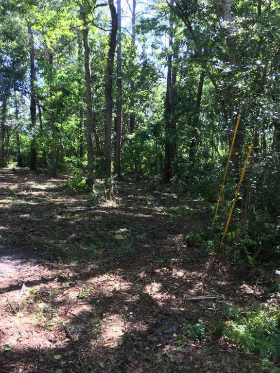 n/a Stillwater Road, Freeport, FL 32439 (MLS #804904) :: ResortQuest Real Estate