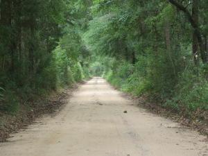 5.27 ACxxx Broderick Road, Holt, FL 32564 (MLS #807937) :: Keller Williams Realty Emerald Coast
