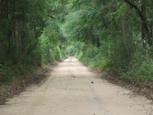 8.88 ACxxx Broderick Road, Holt, FL 32564 (MLS #807938) :: Keller Williams Realty Emerald Coast