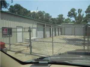 216 Kelly Road, Niceville, FL 32578 (MLS #808391) :: Classic Luxury Real Estate, LLC