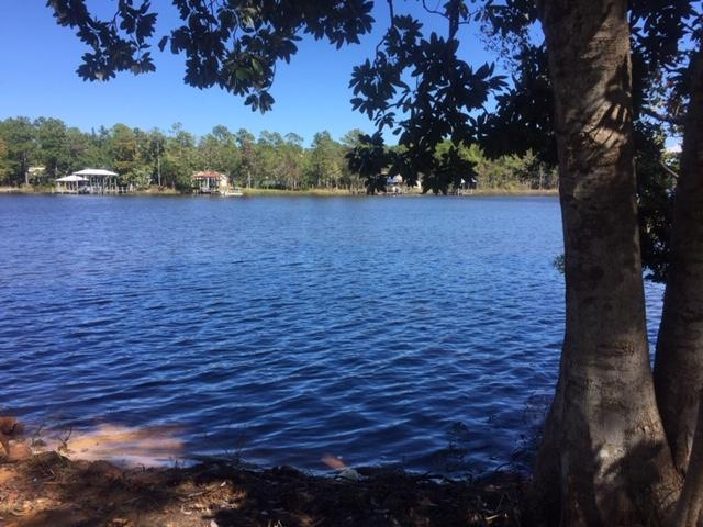 Lot 30 Bay Grove Road, Freeport, FL 32439 (MLS #809398) :: ResortQuest Real Estate