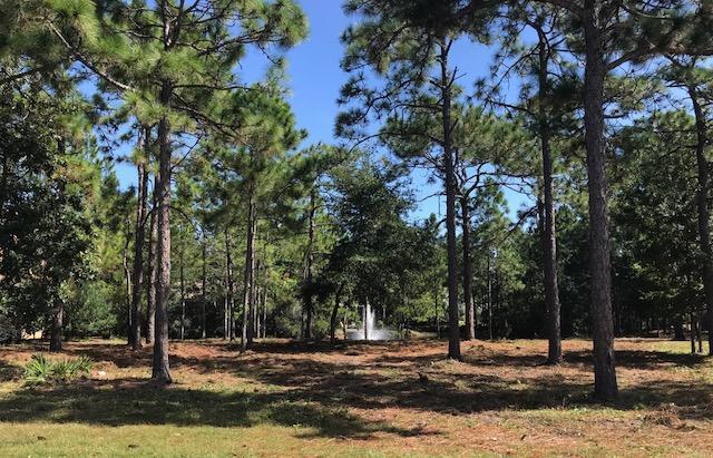 1601 San Marina Boulevard, Miramar Beach, FL 32550 (MLS #810803) :: Berkshire Hathaway HomeServices Beach Properties of Florida