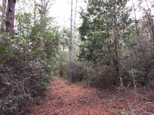 85 Acres County Hwy 183 South, Defuniak Springs, FL 32435 (MLS #813593) :: The Premier Property Group