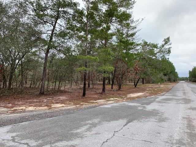 Lot 49 White Oak Lane - Photo 1
