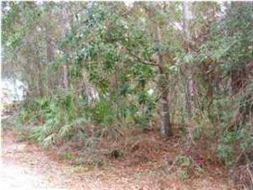 Lot 40 Harstvedt Plantation Drive, Santa Rosa Beach, FL 32459 (MLS #815488) :: Luxury Properties Real Estate