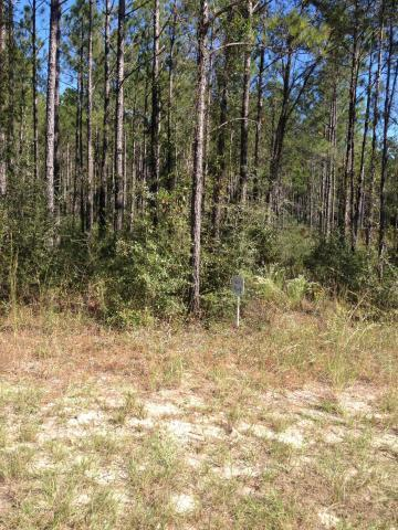 Lot 32 Secret Street, Freeport, FL 32439 (MLS #815703) :: CENTURY 21 Coast Properties