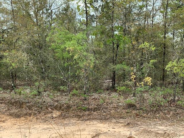 LOT 13&14 E Oleander Ave, Defuniak Springs, FL 32433 (MLS #820052) :: Classic Luxury Real Estate, LLC