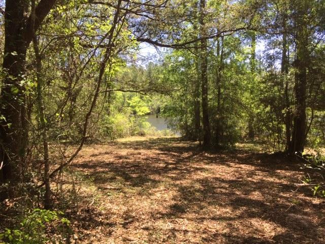 3138 Hwy 90, Crestview, FL 32539 (MLS #822671) :: Counts Real Estate Group