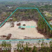 1002 Skunk Valley Road, Southport, FL 32409 (MLS #825307) :: The Beach Group