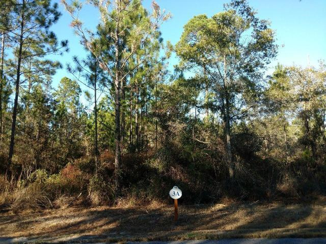 Lot 3 Sun Bear Circle, Freeport, FL 32439 (MLS #827121) :: Hammock Bay