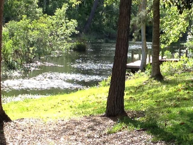 Lot 8 Waterview Cove Dr., Freeport, FL 32439 (MLS #828095) :: Counts Real Estate Group