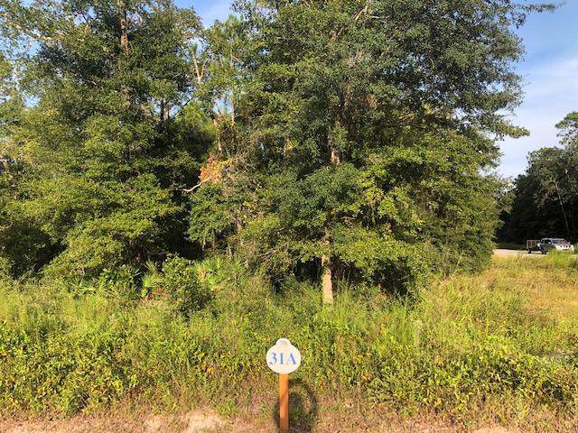 Lot 31 Hibernate Way, Freeport, FL 32439 (MLS #831444) :: Hammock Bay