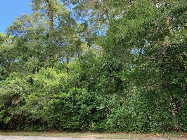 XXX Kelly Place, Mossy Head, FL 32434 (MLS #831753) :: CENTURY 21 Coast Properties