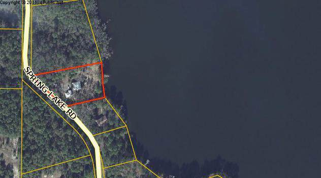 946 Spring Lake Road, Defuniak Springs, FL 32433 (MLS #832509) :: CENTURY 21 Coast Properties