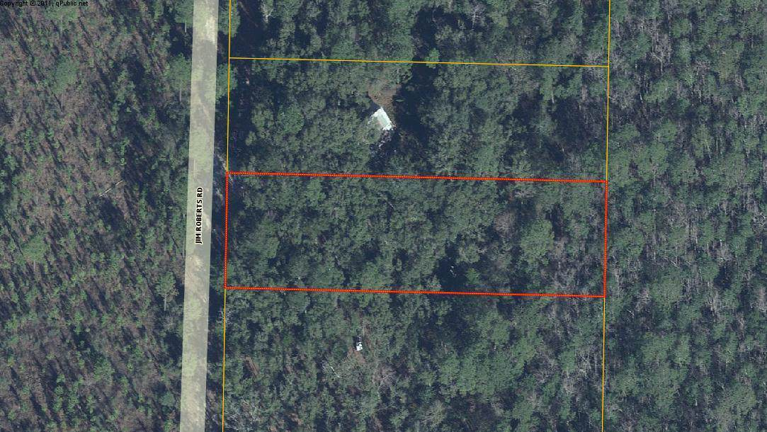 .76 AC Lot Jim Roberts Road - Photo 1