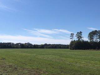 10 AC - D Griffith Mill Road - Photo 1