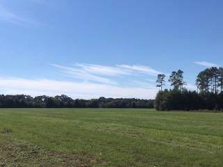 10 AC - D Griffith Mill Road, Holt, FL 32564 (MLS #834810) :: Classic Luxury Real Estate, LLC