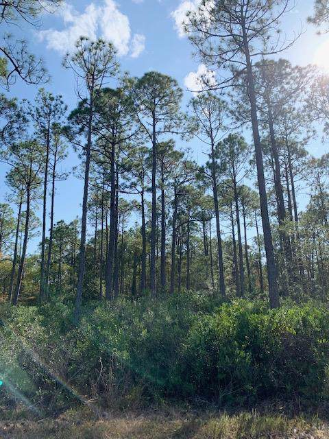 Monk Lane Lot 14 Monk Lane, Santa Rosa Beach, FL 32459 (MLS #835306) :: Berkshire Hathaway HomeServices PenFed Realty
