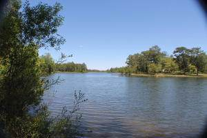 1.10 AC Lakeview Drive, Crestview, FL 32536 (MLS #835738) :: Keller Williams Emerald Coast