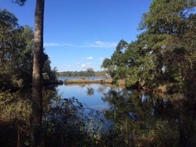 Lot 5B Lagrange Road, Freeport, FL 32439 (MLS #840419) :: Coastal Lifestyle Realty Group
