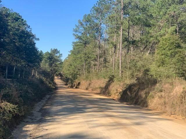 1341 Sandy Creek Rd, Westville, FL 32464 (MLS #840744) :: Somers & Company