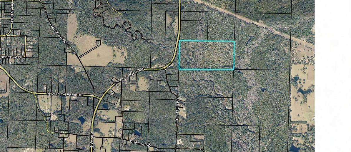 79 acres Hwy 393 - Photo 1