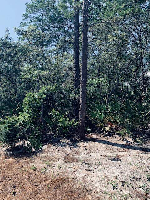 Lot 9 Grayton Blvd., Santa Rosa Beach, FL 32459 (MLS #845998) :: Linda Miller Real Estate