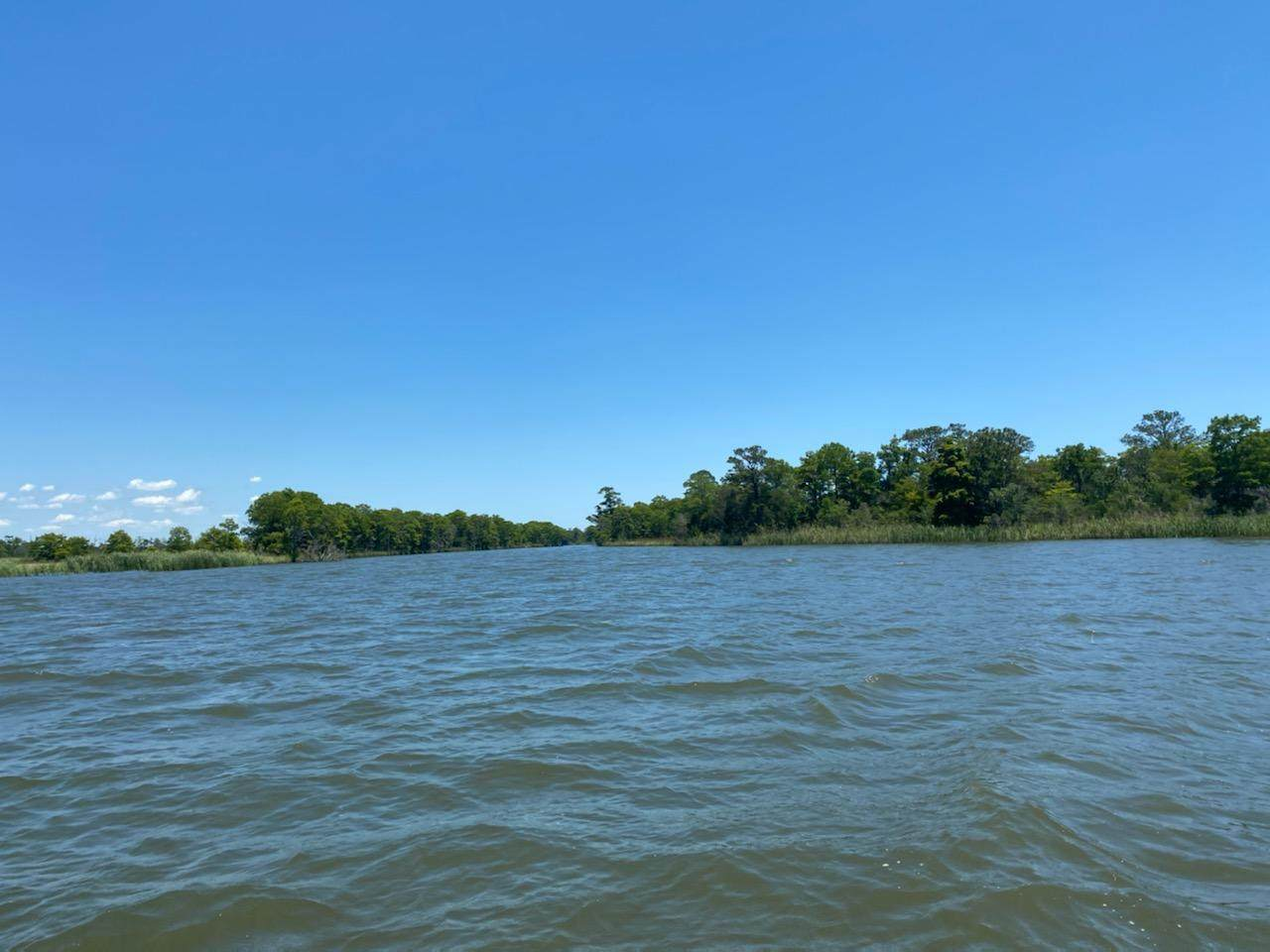 LOT 5 Part Of Atzberger Island - Photo 1