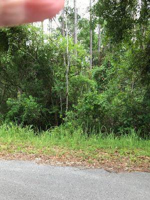XX Jones Drive, Freeport, FL 32439 (MLS #847239) :: Scenic Sotheby's International Realty