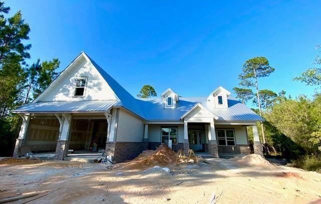 87 Sun Bear Circle, Freeport, FL 32439 (MLS #847288) :: Coastal Luxury
