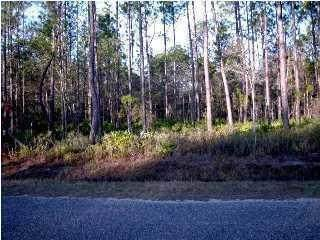 LOT 51 Mallet Bayou Road, Freeport, FL 32439 (MLS #850903) :: Scenic Sotheby's International Realty