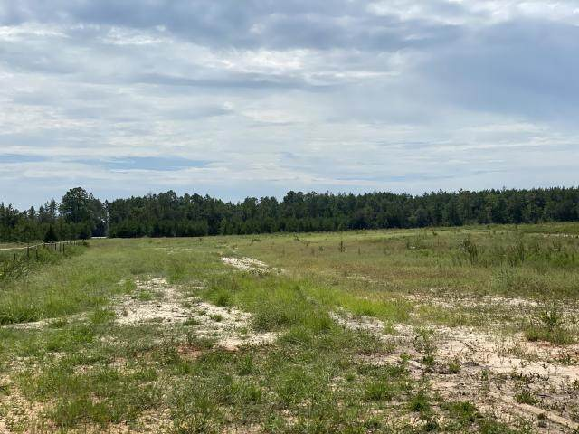 24.4 AC Outlook Road, Milton, FL 32583 (MLS #856066) :: Counts Real Estate Group