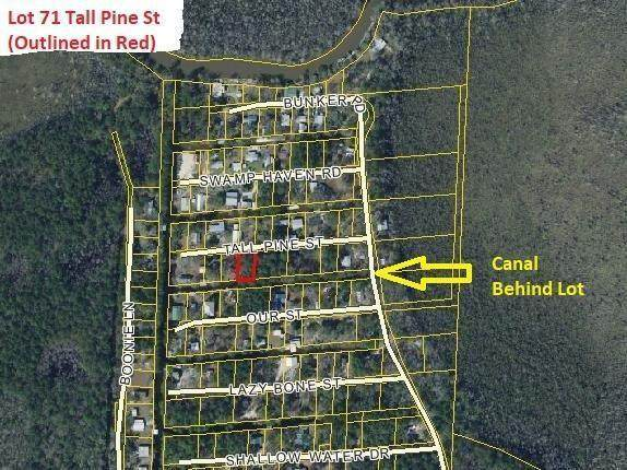 71 Tall Pine Street, Vernon, FL 32462 (MLS #860102) :: Counts Real Estate on 30A