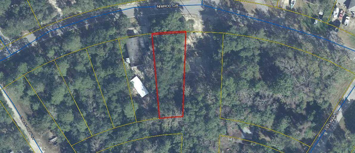 .21 Acres Nimrod Circle - Photo 1