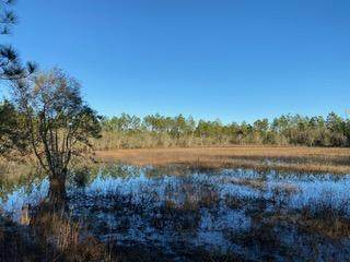 240 ac Hwy 20, Other, FL  (MLS #862322) :: Linda Miller Real Estate