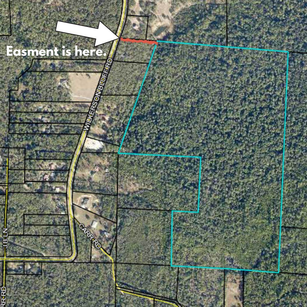 90 Acres Wilkerson Bluff Road - Photo 1