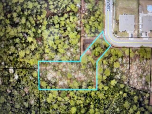 .74 AC Ashton Circle, Crestview, FL 32536 (MLS #866061) :: Better Homes & Gardens Real Estate Emerald Coast