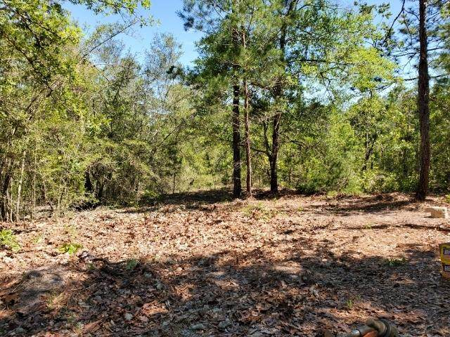 346 Schubert Circle, Defuniak Springs, FL 32433 (MLS #868540) :: Corcoran Reverie