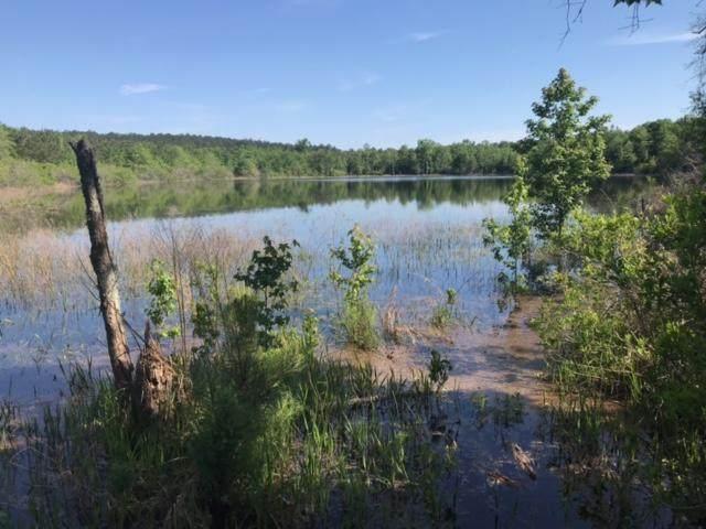 XX Otter Pond Road, Westville, FL 32464 (MLS #870778) :: Classic Luxury Real Estate, LLC