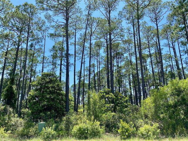 lot  25 Driftwood Point Road, Santa Rosa Beach, FL 32459 (MLS #871960) :: Berkshire Hathaway HomeServices Beach Properties of Florida