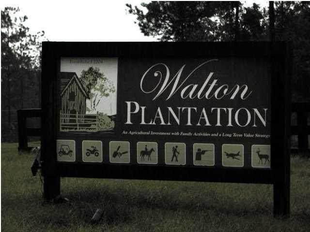 D-3 N Planters Drive, Laurel Hill, FL 32567 (MLS #872587) :: Emerald Life Realty
