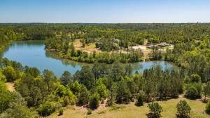 10 AC Currie Road Parcel D, Crestview, FL 32536 (MLS #875197) :: NextHome Cornerstone Realty
