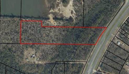 0 Highway 231, Fountain, FL 32438 (MLS #877258) :: Counts Real Estate Group