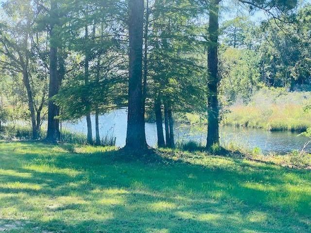 193 Ramsey Branch Road, Freeport, FL 32439 (MLS #877679) :: Rosemary Beach Realty
