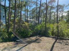 44 Sweetgum Loop, Inlet Beach, FL 32461 (MLS #877733) :: The Premier Property Group