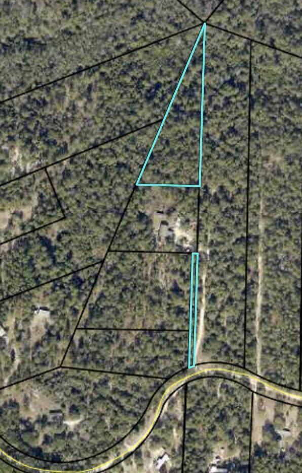 2.2 Acres Cotton Creek Road - Photo 1