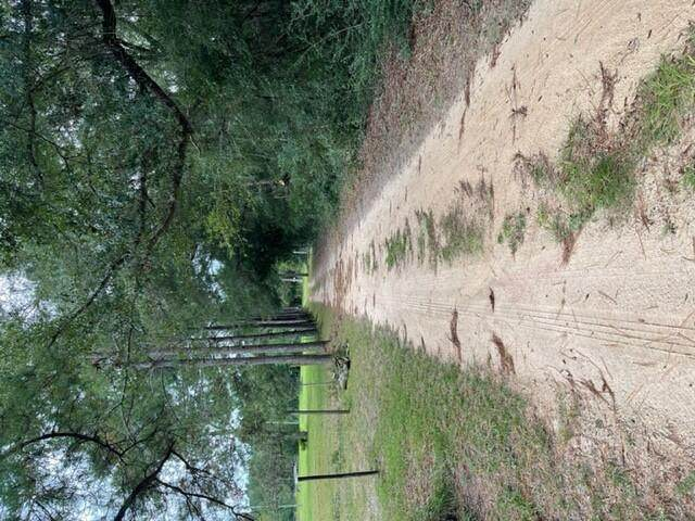 2972 Coon Bottom Rd Road, Ponce De Leon, FL 32455 (MLS #883365) :: Scenic Sotheby's International Realty